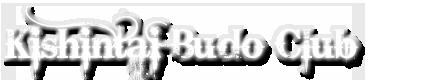 Kishintai budo club